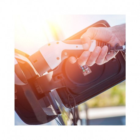 Cargador de coche eléctrico tipo I Pritec con contador de energía para Peugeot, Opel, Citroën, Mitsubishi, Ford