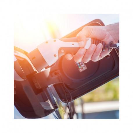 Cargador de coche eléctrico doble tipo I Pritec para Peugeot, Opel, Citroën, Ford, Kia